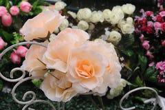 Klingeryt z białymi kwiatami patrzeli pięknym patrzeć Zdjęcie Royalty Free