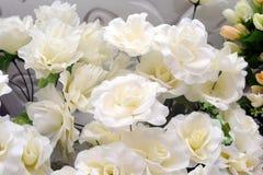Klingeryt z białymi kwiatami patrzeli pięknym patrzeć Obraz Royalty Free