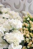 Klingeryt z białymi kwiatami patrzeli pięknym patrzeć Fotografia Stock