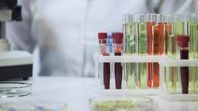 Klinische test, bloed en vaccinsteekproeven die zich op de lijst bij laboratorium bevinden stock fotografie