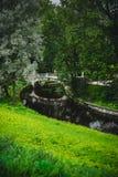 Klinknagel in het park Royalty-vrije Stock Foto