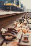 Klinknagel op het spoor en de gevallen bladeren stock fotografie