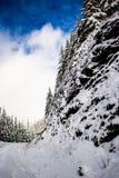 Klip aan de kant van de Sneeuwweg op Mary& x27; s Piekoregon royalty-vrije stock foto's