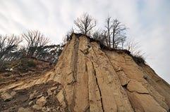 Klip met bomen Stock Fotografie