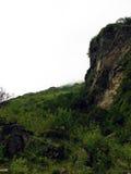 Klip op een Grasrijke Himalayan-Heuvel Stock Fotografie