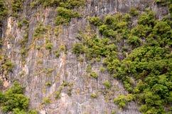 Klip van phi phi eiland Stock Afbeelding