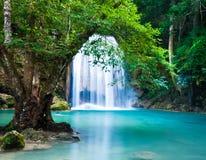 Klip van Waterval in diep bos Royalty-vrije Stock Afbeeldingen