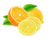 Klipp apelsinen och citronen royaltyfri bild