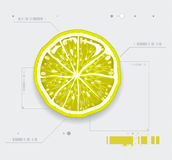 klipp citronen Royaltyfri Fotografi