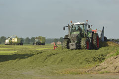 Klipp gräsatt hugga av och ensilage med traktorer Arkivfoton