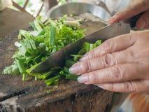 Klipp grönsaken Royaltyfria Foton