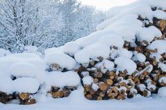 Klipp loggar in ett vinterträ under snödrivor Arkivfoton