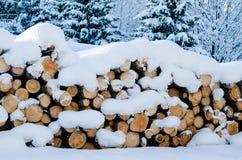 Klipp loggar in ett vinterträ under snödrivor Fotografering för Bildbyråer