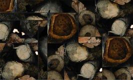 Klipp modellen för cirkeln för trädstammen Arkivfoto