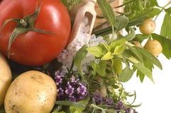 klipp nya örtgrönsaker Royaltyfri Bild