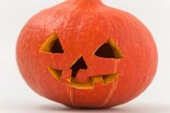 klipp pumpa för personen för halloween ferie ut pumpa med snidit på den en råna Fotografering för Bildbyråer
