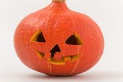 klipp pumpa för personen för halloween ferie ut pumpa med snidit på den en råna Royaltyfria Bilder