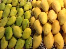 klipp skivade kvinnan för fruktfruktmango uppvisningen Royaltyfri Foto