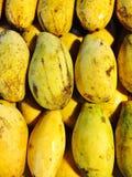 klipp skivade kvinnan för fruktfruktmango uppvisningen Fotografering för Bildbyråer