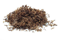 Klipp tobak Arkivbilder