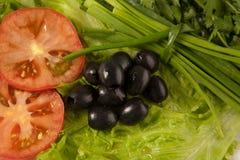 Klipp tomaten, oliv och grönsallat royaltyfri bild