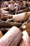 Klipp torra Wood rundor arkivbilder