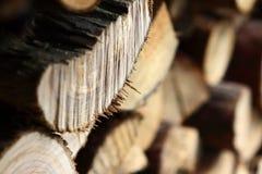 klipp trä Arkivbilder