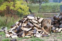 Klipp trä för journalbrand Förnybar resurs av energi miljö royaltyfria bilder