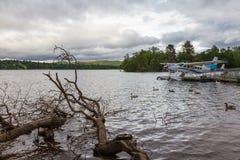 Klipp trädfilialer och hydroplane i sjön Loch Lomond Royaltyfri Fotografi