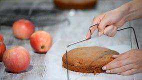 Klippa en konfektrad av sockerkakan konfekt Ljusbrun kaka för matlagning arkivfilmer