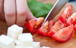 klippa nya tomater Arkivbild