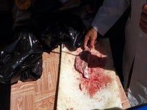 Klippa nytt kött på en utomhus- stall i vändkretsarna stock video
