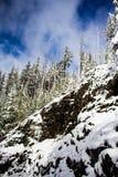 Klippa på sidan av den snöig vägen på Mary& x27; s-maximum Oregon arkivfoton