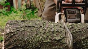 Klippa till och med trä med chainsawen arkivfilmer