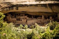 Klippaboningar på Cliff Palace, Mesa Verde National Park Arkivfoto