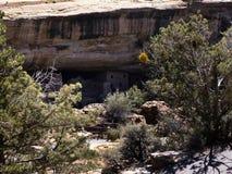 Klippaboningarna i Mesa Verde National Park Colorado USA Det finns omkring 600 klippaboningar med nationalparken Royaltyfria Foton