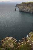 klippamoder Royaltyfri Fotografi