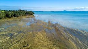 Klippe auf einem sonnigen Strand mit Ackerland auf dem Hintergrund Auckland, Neuseeland Lizenzfreie Stockfotografie
