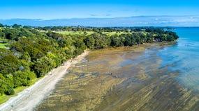 Klippe auf einem sonnigen Strand mit Ackerland auf dem Hintergrund Auckland, Neuseeland Stockbild