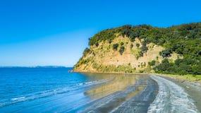 Klippe auf einem sonnigen Strand mit Ackerland auf dem Hintergrund Auckland, Neuseeland Stockbilder