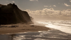 Klippe bei San Gregorio State Beach Silhouette Lizenzfreies Stockfoto