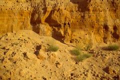 Klippe des gelb-orangeen braunen Sandbodenlehms unter dem hellen sonnigen Tag Alte Backsteinmauer Stockfotos