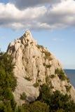 Klippe und Bäume auf kleiner Insel Stockfotografie