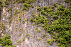 Klippe von Phiphiinsel Stockbild