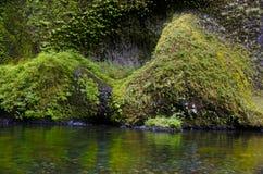 Klippen, Adler-Nebenfluss, Kolumbien-Fluss-Schlucht Lizenzfreie Stockfotos