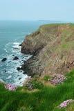 Klippen auf dem nationalen Weg Pembrokeshire (Porträt) Stockbild