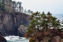 Klippen, die den Ozean übersehen Lizenzfreie Stockbilder