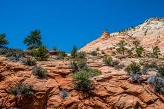 Klippen en canions in Zion National Park Het landschap van een deel Utah royalty-vrije stock foto's