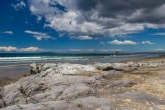 Klippen op een strand dichtbij Auckland, Nieuw Zeeland stock fotografie