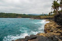 Klippen op een tropische kust met palmen en oorspronkelijke blauwe overzees Royalty-vrije Stock Afbeeldingen